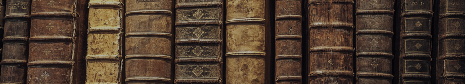 Freidenker Galerie, lustige Zitate, Weisheiten, Bilder und Sprüche