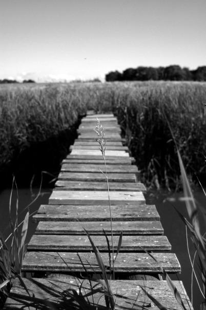 Brücke über das Tief Ostbense, Foto von Dr. Axel Schlote